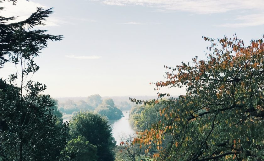 A Guided  London Walk from Richmond to Ham House